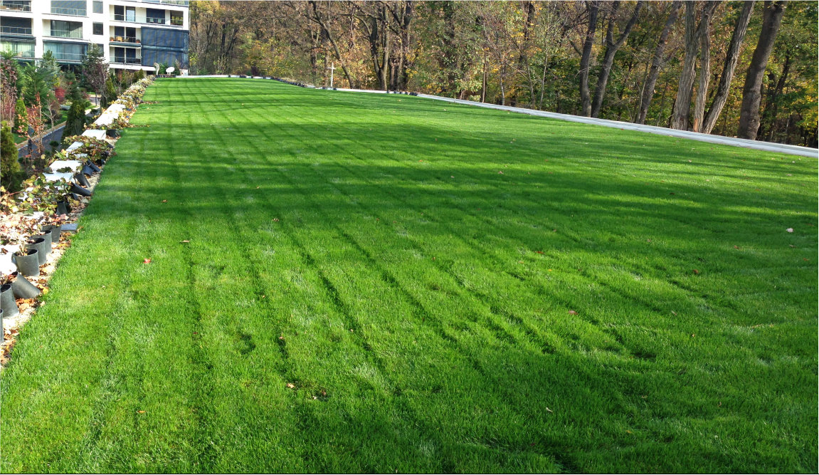 Hidroizolatie Terasă verde și jardinieră, Gradiniță complex STEJARI, Băneasa 700 m²